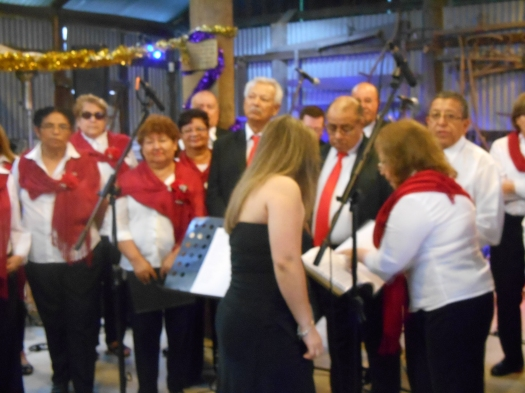 The Spanish language choir preparing to kick off 'Carols in the Garden' at the Fairfield Museum