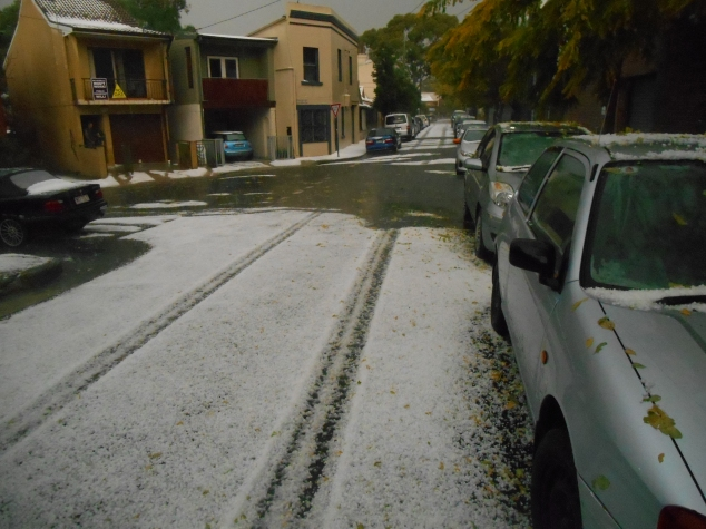 If I'd only taken this photo the minute before! The hail was still pristine.
