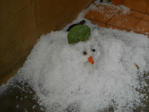 The local kid's made good use of the hail. A neighbour's front doorstep.