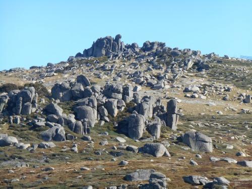 High up near Mount Kosciuszko, Australia's tallest peak.