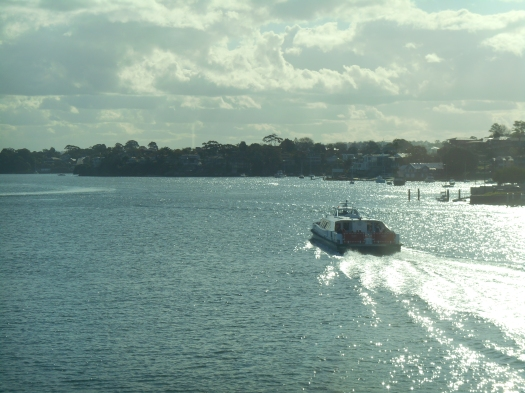 The Parramatta Ferry heading up river.