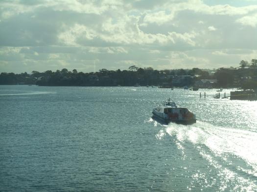 The Parramatta Ferry heading up river.