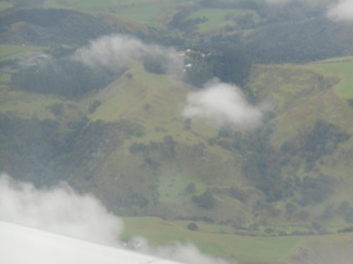 The verdant New Zealand countryside