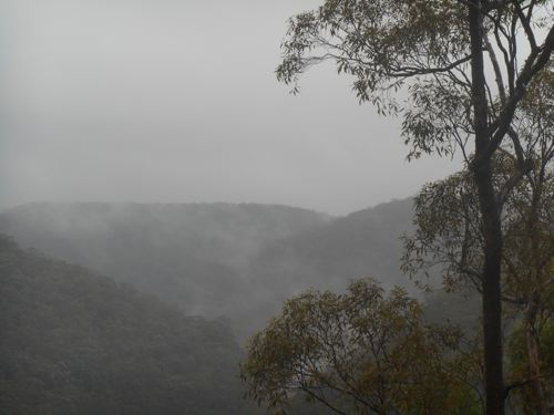 The Blue Mountains is famous in winter for its mist. It didn't disappoint during the party.