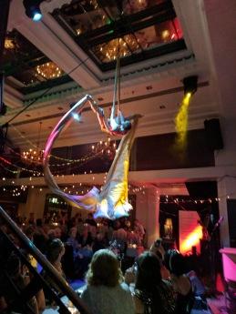 Missy, ribbon acrobat